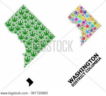 Vector Marijuana Mosaic And Solid Map Of District Columbia. Map Of District Columbia Vector Mosaic F