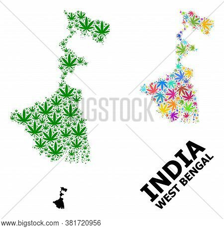 Vector Hemp Mosaic And Solid Map Of West Bengal State. Map Of West Bengal State Vector Mosaic For He
