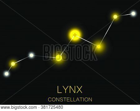 Lynx Constellation. Bright Yellow Stars In The Night Sky. A Cluster Of Stars In Deep Space, The Univ