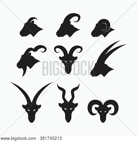 Side Face And Front Face Of Sheep, Goat, Billy Goat, Angora Goat Set - Mammal, Animal Vector Icon