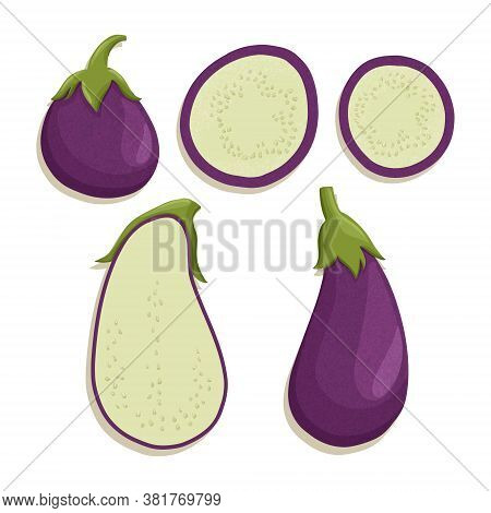Vector Eggplant Collection In Cartoon Style. Bright Aubergine Vegetables Isolated On White Backgroun