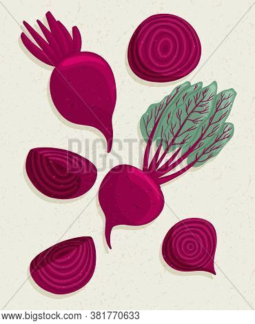 Vector Beetroot Cartoon Illustration With Textures. Healthy Organic Beets With Leaves And Beetroot S