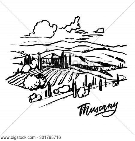 Tuscany Landscape Hand Drawn Illustration. Vector Llustration On White Background.