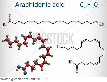 Arachidonic Acid, Aa, Ara Molecule. It Is Unsaturated Omega-6 Fatty Acid, Is Precursor In Biosynthes