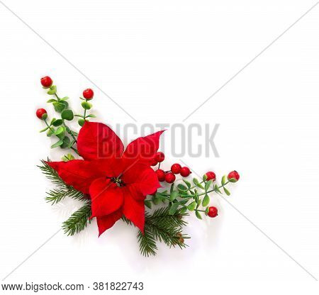Christmas Decoration. Flower Of Red Poinsettia, Branch Christmas Tree, Red Berries On A White Backgr