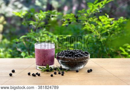 Ripe Berries Wild Bilberries And Smoothie With Berries On Wooden Table On Background Of Shrubs With