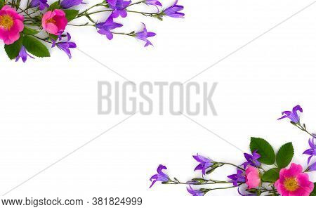 Frame Of Violet Blue Flowers Bell And Flowers Pink Dog-rose On A White Background With Space For Tex