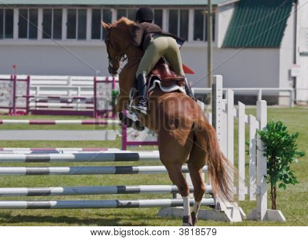 horse and rider taking a jump in local showjumping competition poster