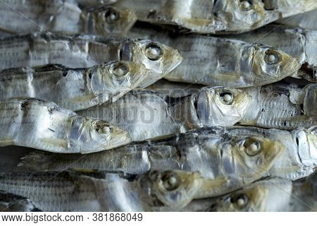 A Cluster Of Dried Sardines. An Overhead Close Up Photo Of Dried Sardines Laid In A Neat Pile.