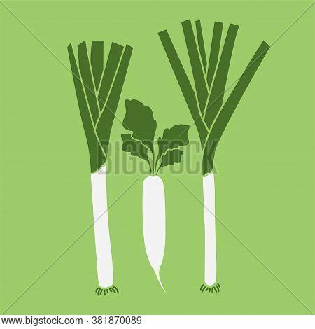 Daikon Radish And Leek. Vegetables, Healthy Food. Vector Illustration Eps.