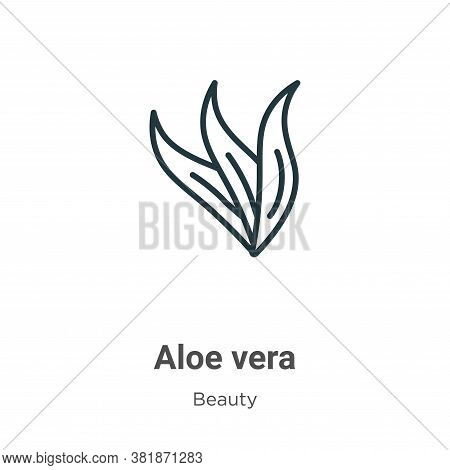 Aloe vera icon isolated on white background from beauty collection. Aloe vera icon trendy and modern
