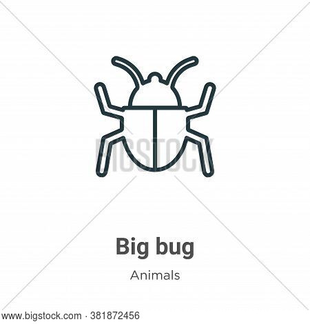 Big bug icon isolated on white background from animals collection. Big bug icon trendy and modern Bi