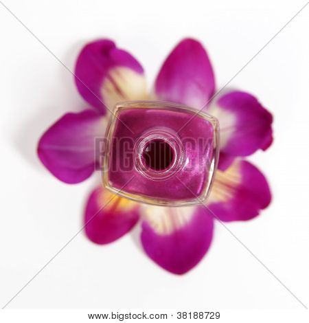 Pink nail polish bottle on a flower