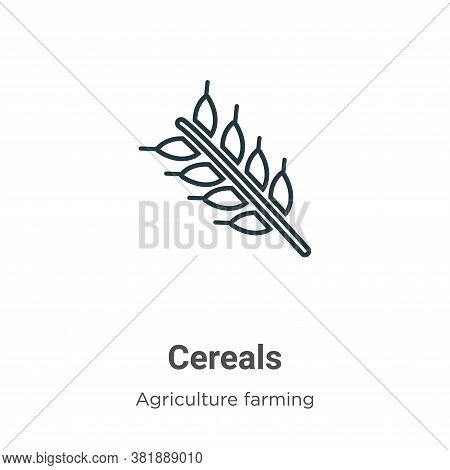 Cereals icon isolated on white background from agriculture collection. Cereals icon trendy and moder