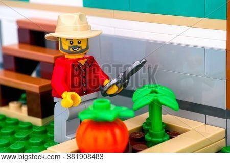 Tambov, Russian Federation - June 26, 2020 Lego Farmer Minifigure With Garden Shears Near Vegetable