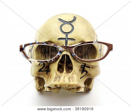 Skull wearing reading glasses