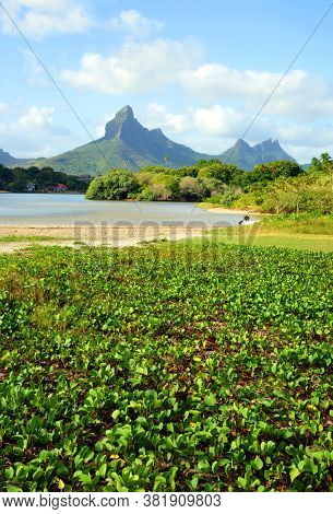 Beautiful landscape in Mauritius island. View from Tamarin Bay on Rempart mountain.