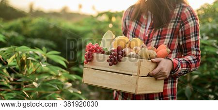 Farmer With Eco Fruit And Vegetables In Autumn. Agricultural On Harvest Cornucopia In Fall Season An
