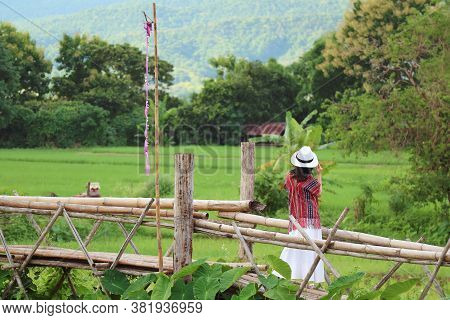 Woman Enjoy The Beautiful View Of Vibrant Green Paddy Field From A Bamboo Bridge