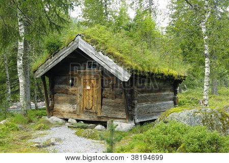 """Old wooden shed with a """"green"""" roof in Norway"""