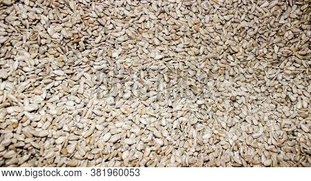 Peeled Sunflower Seeds Are Piled In A Pile. Feed For Farm Birds. Close-up, Background.