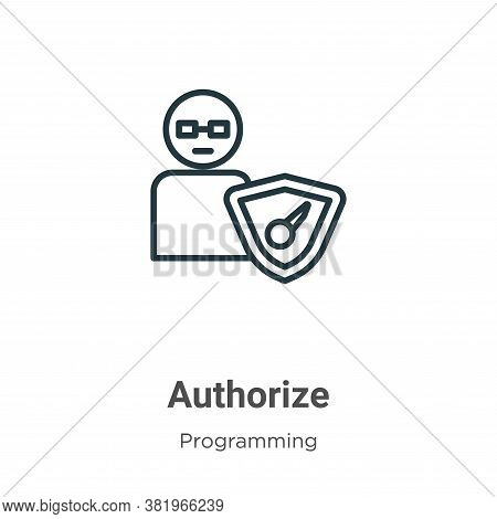 Authorize icon isolated on white background from programming collection. Authorize icon trendy and m