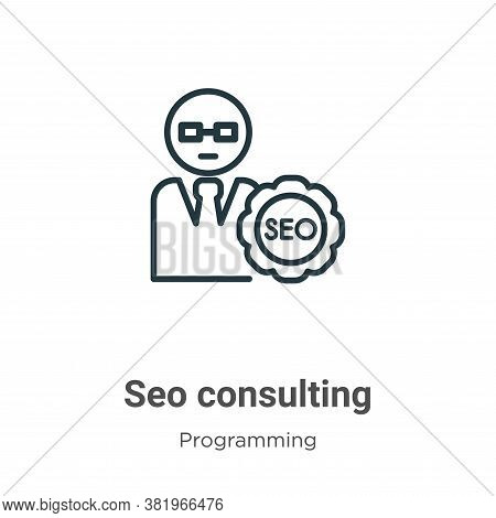 Seo consulting icon isolated on white background from programming collection. Seo consulting icon tr