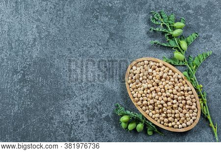 Uncooked Dried Chickpeas With Raw Green Chickpea Pod Plant On Rustic Table. Heap Of Legume Chickpea