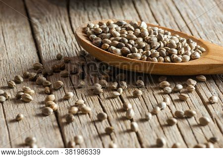 Heap Of Dried Organic Hemp Seeds Or Cannabis Plant Seeds In Spoon On Wooden Backdrop. Cannabis Herb