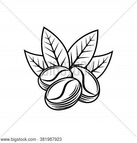 Coffee bean. Coffee Logo . Coffee vector. Coffee Logo vector. Coffee cup Logo. Coffee Shop logo. Coffee beans Logo. Coffee bean design. Coffee bean Logo vector. Coffee beans illustration. Coffee bean Logo. Coffee bean vector design illustration