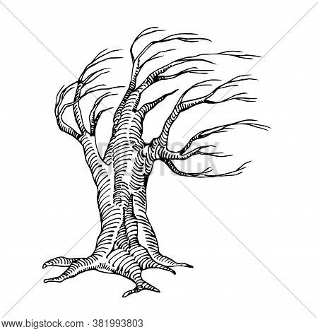 Scary Dry Dead Tree With Lifeless Branches The Mystical Character Of Halloween Holiday, Vector Illus