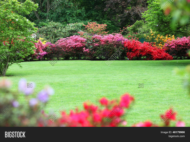 Beautiful garden image photo free trial bigstock beautiful garden with flowering shrubs izmirmasajfo