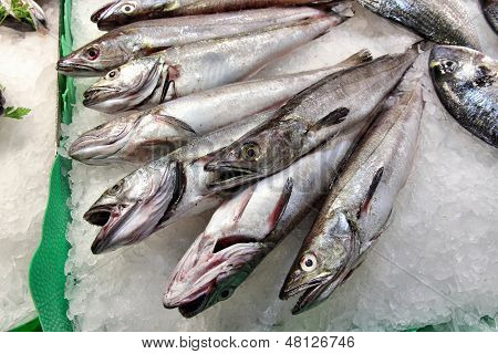 Fish Market In Spain