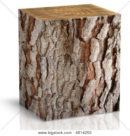 Square Trunk Of Tree
