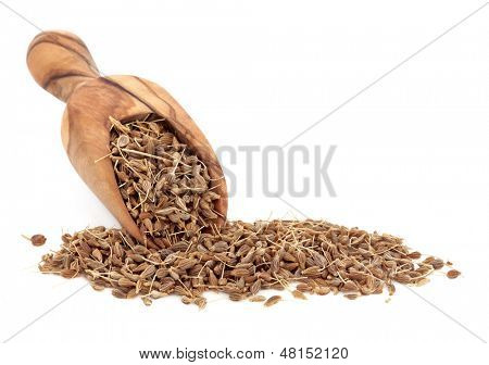 Aniseed spice in an olive wood scoop over white background.