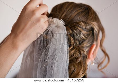 Bride With White Veil