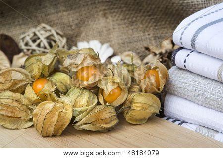 Macro Image Of Fresh Physallis Berries