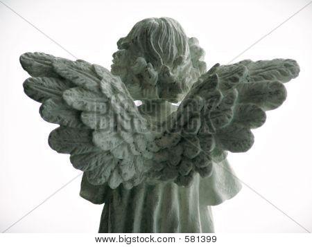 AngelGreen