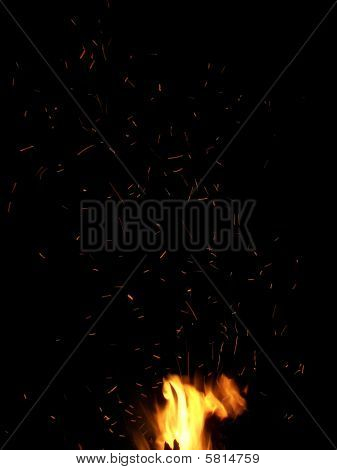 Fire Flies at Night