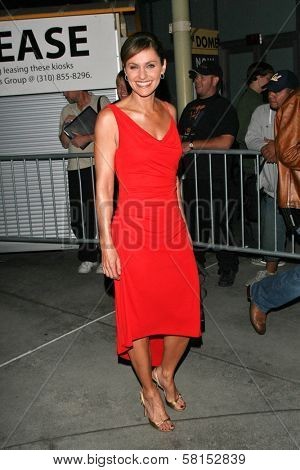 Amy Brenneman at the premiere of