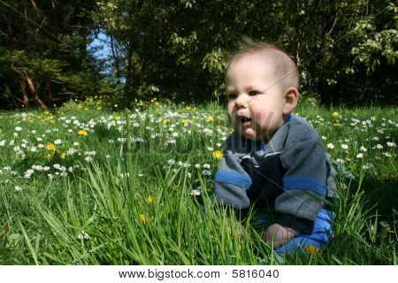 Baby boy sitting in flowers and tall grass