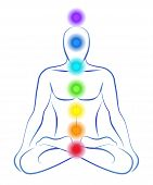 Illustration of a meditating person in yoga position with the seven main chakras. poster