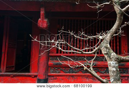 Temple of Literature in Hanoi, Vietnam. Architecture details of popular tourist site and city landmark. (Selective focus on tree branches)