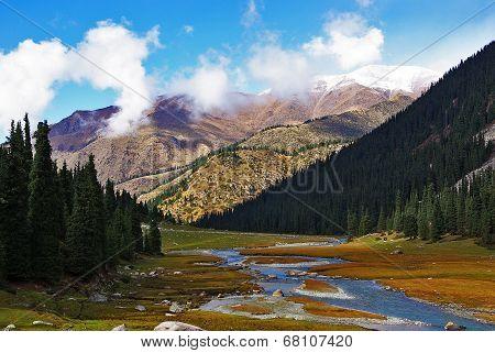 valley stream Oguz