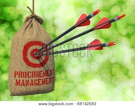 Procurement Management - Arrows Hit in Red Mark Target.