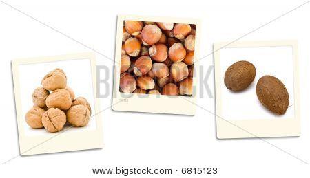 Nuts Photos