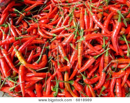 Chili peppers in a market, Thailand.