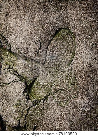 Shoe Footprint On Concrete Surface