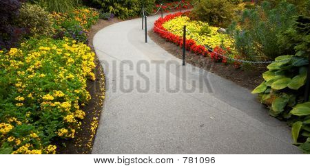 A path & arranged flowers