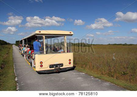 Shark Valley Tram Tour